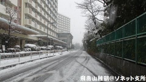 今日の大雪で、路面も真っ白に…@都内某所。