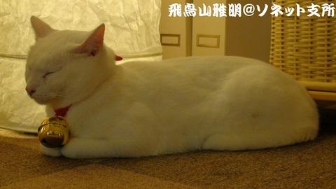 2010年の誕生日会の時のぷっさん……ってか、寝とるし (^Д^;)