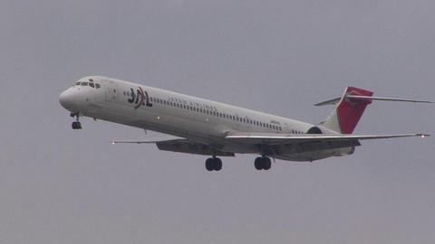 日本航空 JA004D