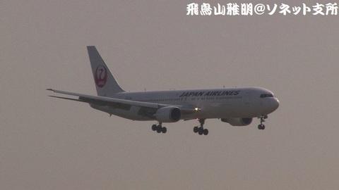 日本航空 JA655J@東京国際空港(強風下の京浜島つばさ公園より)。RWY22へのファイナルアプローチ。