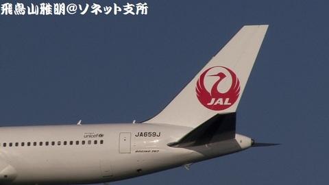 JA659J・機体後方(尾翼)のアップ。