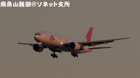 日本航空 JA701J@東京国際空港。浮島町公園より。
