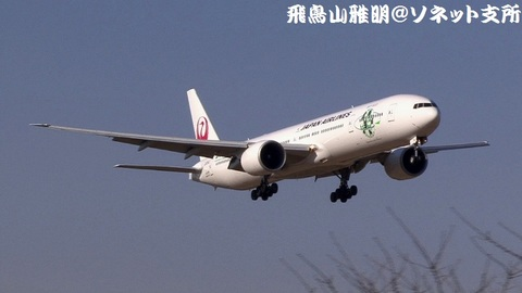日本航空 JA734J『Sky Eco』@成田国際空港(さくらの山公園より)。RWY16Rへのファイナルアプローチ。