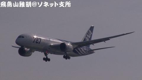 全日本空輸 JA801A@東京国際空港。浮島町公園より。