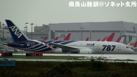 全日本空輸 JA802A@東京国際空港。雨の京浜島つばさ公園より。