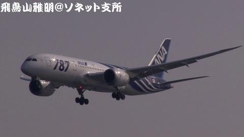 全日本空輸 JA802A@東京国際空港。浮島町公園より。