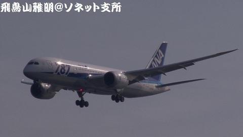 全日本空輸 JA804A@東京国際空港。浮島町公園より。