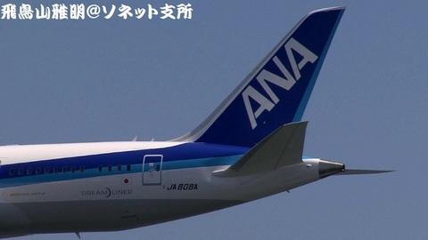 JA808A・機体後方(尾翼)のアップ。