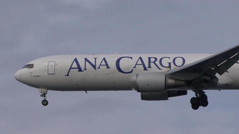 JA8362@東京国際空港 機体前部