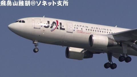 JA8375@東京国際空港 (機体前部のアップ)