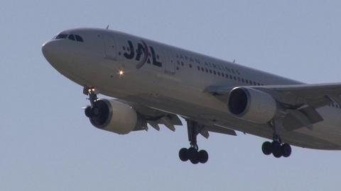 日本航空 JA8562