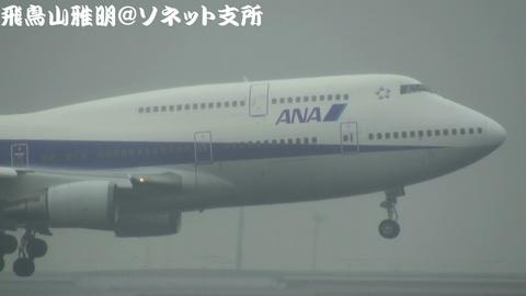 全日本空輸 JA8966@雨天下の東京国際空港。京浜島つばさ公園より。