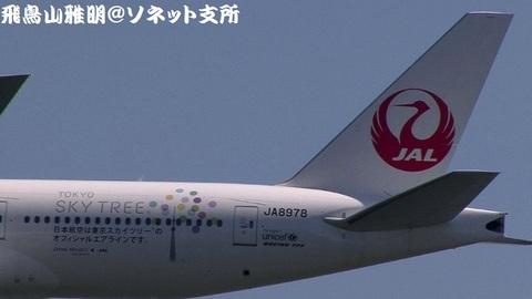 JA8978・機体後方のアップ。鶴丸+「東京スカイツリー」のロゴ。