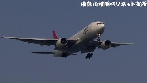 日本航空 JA8981@東京国際空港。城南島海浜公園より。