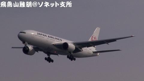 日本航空 JA8983@東京国際空港(浮島町公園より)。ついに、新鶴丸になったのね…。