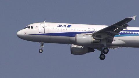 全日本空輸 JA8997