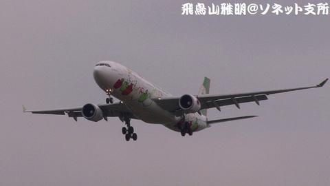 エバー航空 B-16332@成田国際空港。RWY34Lエンドより。