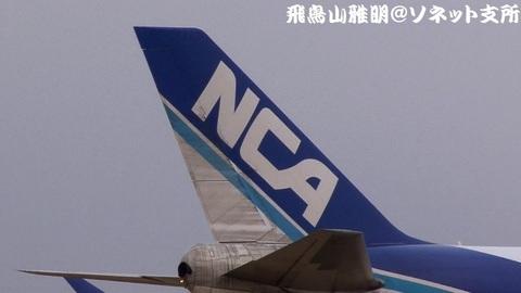 JA01KZの尾翼。