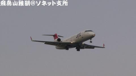 JA206J@東京国際空港