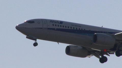 全日本空輸 - エアーニッポン JA55AN