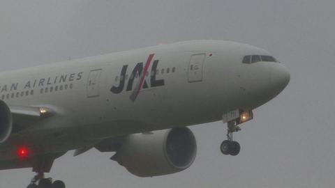 日本航空 JA711J