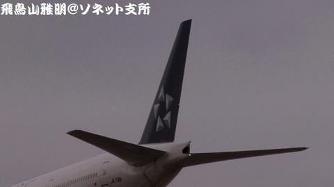 JA731Aの尾翼。
