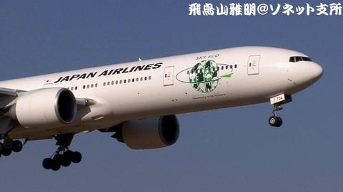 JA734J・機体前方のアップ。『Sky Eco』『Harmony with Nature』(空のエコ~地球とともに~)のロゴが描かれております。