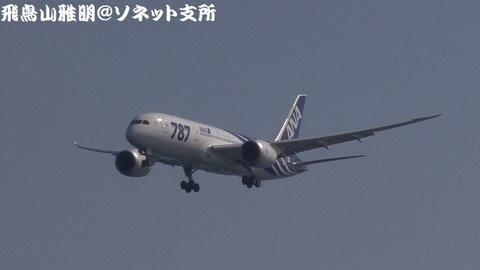 全日本空輸 JA801A@東京国際空港(浮島町公園より)。この日、国内定期路線への初就航を果たしました。