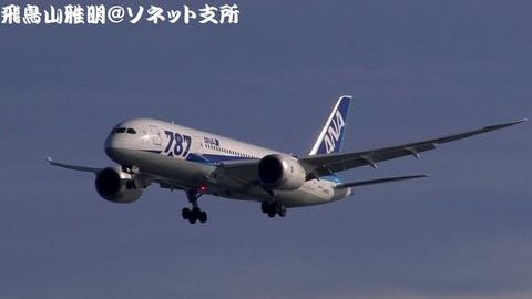 全日本空輸 JA803A@東京国際空港(浮島町公園より)。RWY34Lへのファイナルアプローチ。