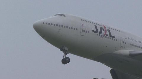 日本航空 JA8071@成田国際空港
