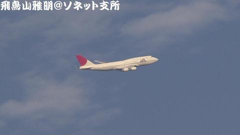 日本航空 JA8084@東京国際空港