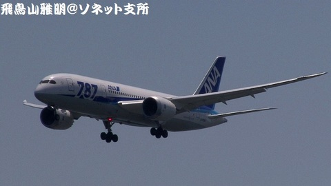 全日本空輸 JA808A@東京国際空港。浮島町公園より。