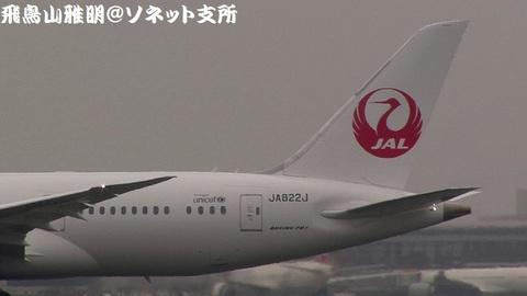JA822J・機体後部(鶴丸)のキャプチャ。