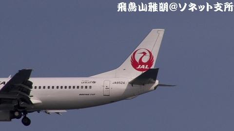 JA8524・機体後方のキャプチャ。JTA機の新塗装も、尾翼は鶴丸……ま、太陽のアークよりは、断然、鶴丸のほうがマシなんだけどね。