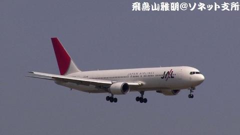 日本航空 JA8986@東京国際空港。強風下の京浜島つばさ公園より。